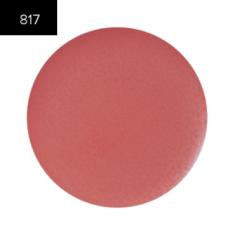 Помада в рефилах 2 гр. (Lip Color 2g.) MAKE-UP-SECRET 817 Плотный глянец